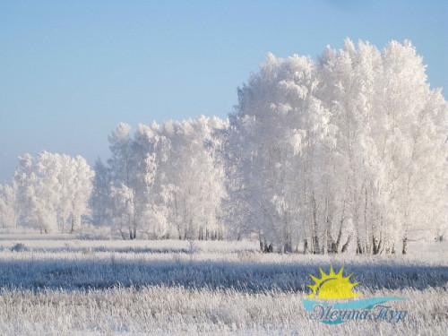 Тур из Вологды в новогодние каникулы «Жигулевская кругосветка: Новый год»