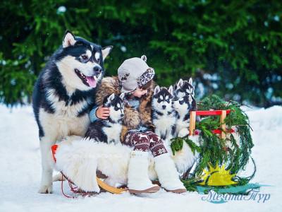 Автобусный тур из Вологды «Карельская кругосветка: Рождество»
