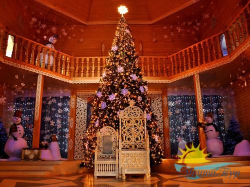 Тур из Вологды в новогодние каникулы «Новый год в Великом Устюге»